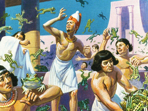 Another time God caused the land of Egypt to be overrun with frogs. Frogs in the streets, frogs in the houses, frogs in their beds, frogs everywhere. But Pharaoh's heart was as hard as before. – Slide 7