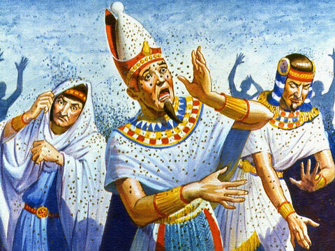 On another occasion, flies were sent by the millions to torment the Egyptians and still the King would not give up. But God continued to deal with Pharaoh to let His people go. – Slide 8
