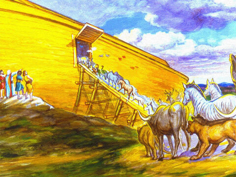 The pairs of all the different kinds of animals were taken into the ark. – Slide 22