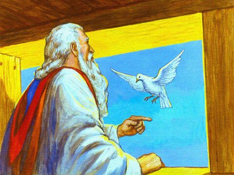 The dove returned and Noah knew that the waters were not yet gone. – Slide 41