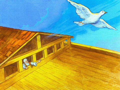 Seven days went by and Noah sent out the dove the second time. – Slide 42
