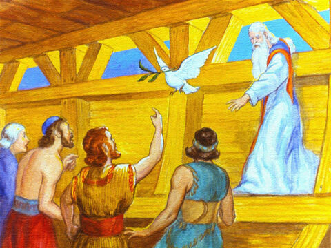 This time she returned with an olive twig. The waters were going down and soon Noah and his family could leave the ark and live once more upon the Earth. – Slide 43