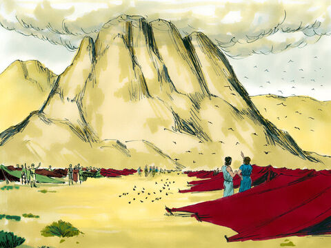 With their enemies defeated, God led His people to the foot of Mount Sinai where they set up camp. – Slide 14