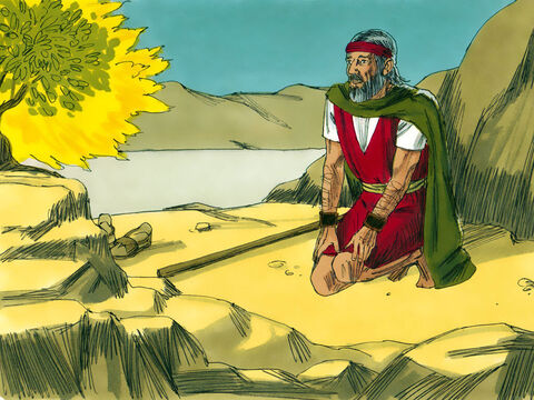 God asked Moses what he held in his hand. 'A staff,' replied Moses. 'Throw it to the ground,' said the Lord. – Slide 12