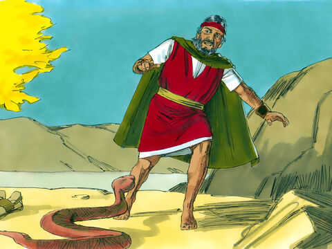 When he threw his staff to the ground it became a snake. Moses was scared and jumped away from it. 'Reach out your hand and take the snake by the tail,' said the Lord. – Slide 13