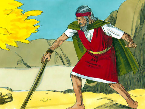 As Moses grabbed the snake's tail, it turned back into a staff. 'This sign will help them believe,' said the Lord God. 'Now put your hand inside your cloak.' – Slide 14