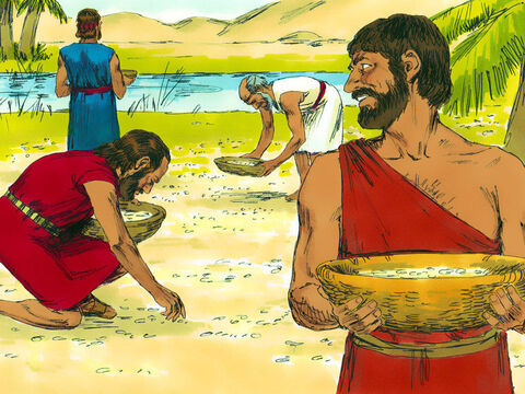 Everyone started gathering the 'what is it? (manna). It was white like coriander seed and tasted like wafers made with honey. – Slide 20