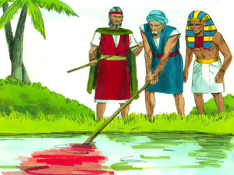 So Aaron did what God had instructed and struck the River Nile with his staff. The water was changed to blood. Fish died, the Egyptians could not drink the water and the river smelt. – Slide 2
