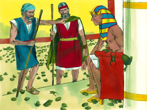 'Pray to your God to take the frogs away from my people and I will let your people go,' promised Pharaoh. Moses replied, 'So you will know there is no-one like God, the frogs will leave you and your houses tomorrow.' – Slide 7
