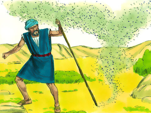 So God told Moses to tell Aaron to strike the dust with his staff and the dust would become gnats. Pharaoh's magicians tried but could not do this. 'This is the finger of God,' they told Pharaoh. – Slide 9