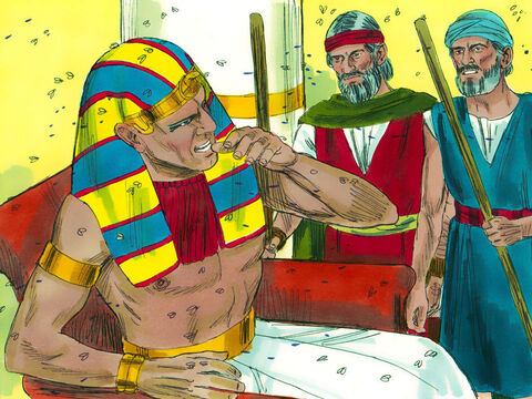 Pharaoh summoned Moses and Aaron. 'I will let you go and offer sacrifices to your God but you must not go far. Now pray to God to stop the flies.' – Slide 15