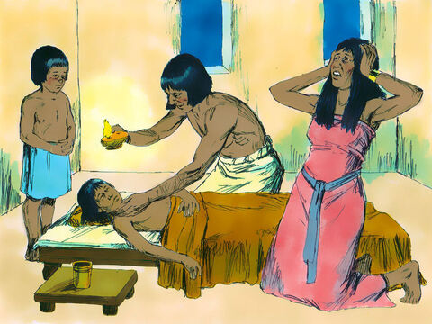 At midnight the Lord passed over the land and the firstborn son of Pharaoh and every Egyptian family was found dead. The first born of every animal was slain too. – Slide 18