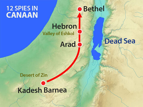 The twelve spies set out from Kadesh Barnea through the Negev desert, where the Amalekites lived, then up into the hill country. – Slide 5