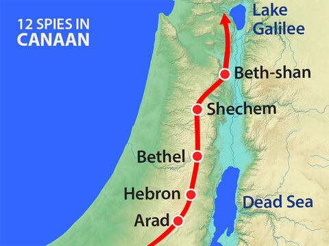 They moved north through the hill country where the Hittites, Jebusites and Amorites lived and then around the River Jordan and Lake Galilee where they saw Canaanites. – Slide 7
