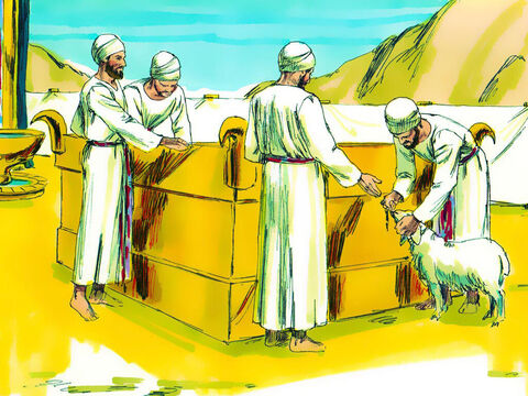 The altar would be used for people to bring a male animal without defect, cattle, sheep, goats (or birds if they were poor). They would put their hand on the animal to show it was being offered for them to make peace with God (Leviticus 1:4). – Slide 22