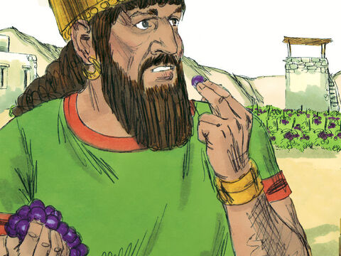 King Ahab went to Naboth's vineyard and took possession of it. But God was not going to let Ahab get away with this evil deed. He told Elijah the prophet to go to Naboth's vineyard with a message for the King. – Slide 10