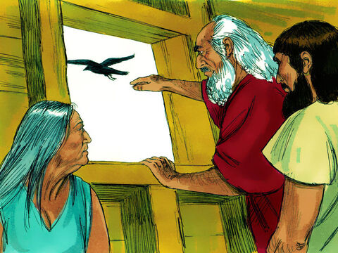 After 40 days Noah sent out a raven but it found nowhere to land. – Slide 15