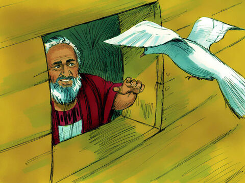 But it could find nowhere to perch and returned to the ark. Noah reached out his hand and brought it back into the ark. – Slide 17