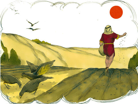 A farmer was scattering seed and some fell on the path. Birds swooped down and ate up the seed on the path. – Slide 3