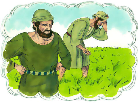 """'When the wheat sprouted the weeds also appeared. The owner's servants asked him, """"Sir, didn't you sow good seed in your field? Where then did the weeds come from?"""" – Slide 4"""