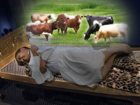 He was standing by the Nile River when seven fat cows came up out of the water and began to feed on the grass. – Slide 3