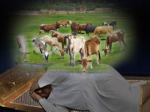 Then seven very thin and bony cows came out of the River Nile and stood by the other cows on the riverbank. – Slide 4