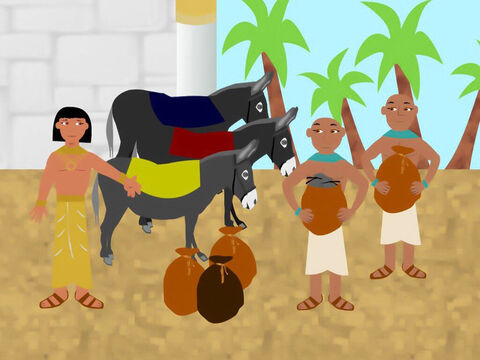 The brothers handed over money to buy the grain. Joseph ordered his servants to load the brothers' donkeys with sacks of grain and secretly told the servants to put the brothers' money into sacks with the grain. He also gave them food for their journey back to Canaan. – Slide 9