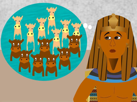 Pharaoh had two dreams. In the first dream he saw 7 fat cows come up out of the river and feed from the grass in the meadow. But then he saw 7 thin cows come up out of the river and eat the 7 fat cows. – Slide 9