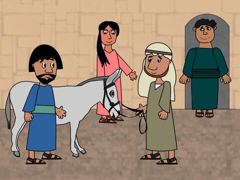 The two disciples did as they were told and found the donkey tied up outside the house. As they began to lead it away the owners came out and asked what they were doing. 'The Lord needs it,' they replied. The owners were happy to let their donkey be used by Jesus. – Slide 2
