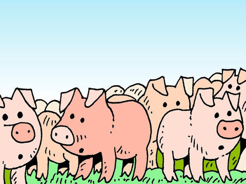 A herd of pigs was feeding on the mountainside nearby, and the demons pleaded with Jesus to let them enter into the pigs. Jesus commanded them to leave the man and enter the pigs instead. – Slide 7