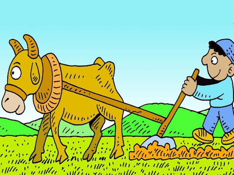 A person who sets out to plough a field must keep going until the job is finished. – Slide 2