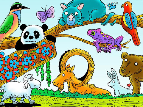 Little Lamb wandered on. Can you see him? What other animals can you see? (Left to right: bee-eater bird, panda, possum, ibex, poison dart frog, rosella parrot, rabbit, bear) – Slide 6