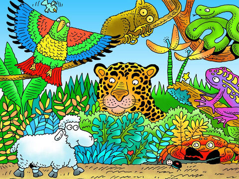 Little lamb did not know the danger he was in by wandering away from the shepherd. Can you see him? What other animals can you see? (Left to right: parrot, tarsier, jaguar, crab, snake, frog). Which of these animals might have hurt little lamb? – Slide 8