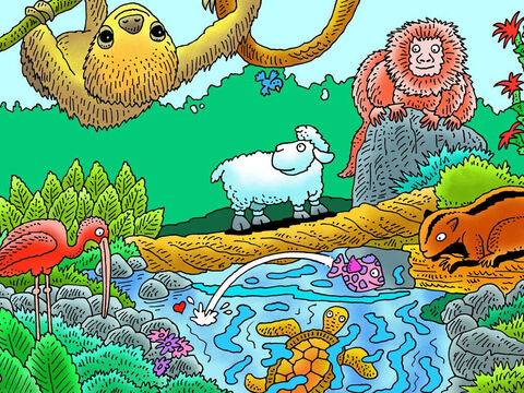 Little lamb did not know the danger he was in by wandering away from the shepherd. Can you see him? What other animals can you see? (Left to right: parrot, tarsier, jaguar, crab, snake, frog). Which of these animals might have hurt little lamb? – Slide 9
