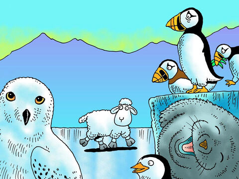 The ground felt very slippery. 'Do you know the way to my shepherd?' little lamb bleated. 'No,' said the penguins. The snowy owl looked away. The seal just laughed. – Slide 13