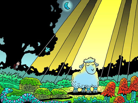 Was his shepherd a good shepherd? Was his shepherd looking for him? Did his shepherd love him enough to keep searching for him? That night little lamb was all on his own. – Slide 15