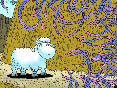 Little lamb ran away down the path but ran into thorns and briers. He was so lost and alone. – Slide 17