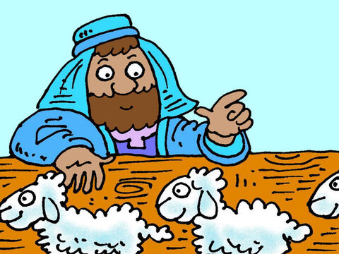 Every day he would count them into the sheepfold. 97… 98… 99 … – Slide 2