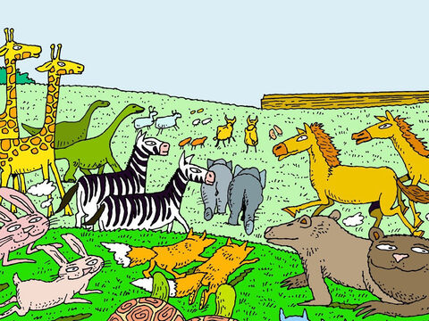 God then gathered the animals He wanted to spare and sent them to Noah in pairs. One male and one female. – Slide 11