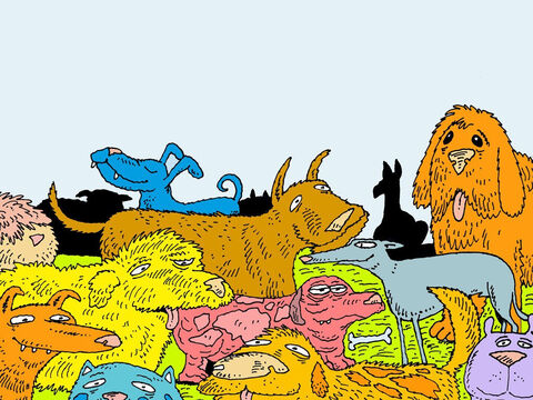 God sent all kinds of wild animals and farming animals. They went into the ark in twos. – Slide 13