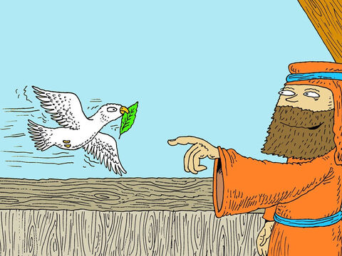 Seven days later Noah again sent out the dove and that evening it came back to him with a fresh olive leaf in its mouth. Seven days later he sent the dove out again. But this time it did not come back. Noah removed the covering of the boat and saw that the land was dry. – Slide 22