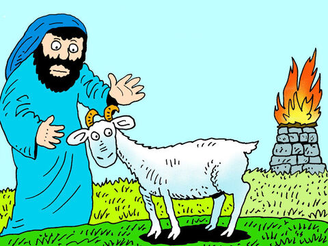 In the Old Testament Bible law, God commanded that two goats, without any defects, should be chosen. <br/>One of them was to be sacrificed as an offering for sin. The goat would lose its life and shed its blood so the people could be forgiven for the wrong things they had done. The goat took the punishment the people deserved for disobeying God. – Slide 1