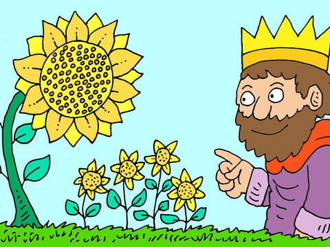 The king looked at the cycle of life, like seeds making plants that make seeds for new plants to grow. Whatever people did now had been done before and would be redone in the future. – Slide 6