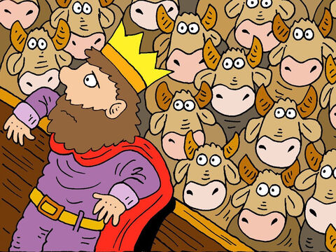 King Solomon bred great herds and flocks, more than any of the kings before him. – Slide 13