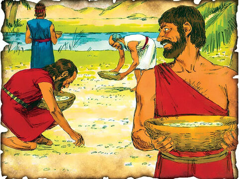 """Manna in the Wilderness - Nation of Israel Wanders 40 Years in the Desert! 1446 B.C. Exodus 16: The nation of Israel sins and God sends manna from heaven to feed the nation for forty years while they wander in the desert. """"And the children of Israel ate manna forty years, until they came to an inhabited land."""" – Slide 15"""