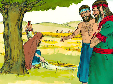 Boaz noticed Ruth collecting grain with the poor. 'Who is that woman?' he asked the man in charge of the harvesting. 'She is the Moabite who returned with Naomi,' he answered. 'She asked permission to pick up grain and has been working hard.' – Slide 3