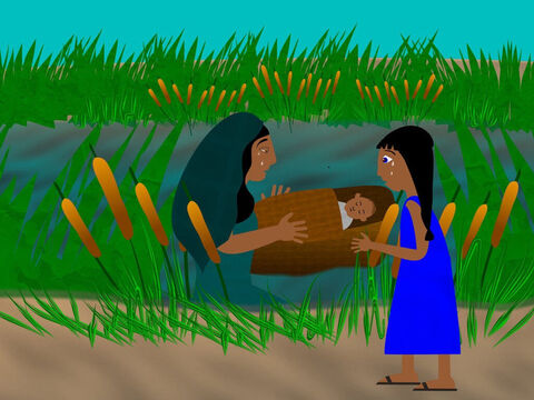So the woman made a basket of bulrushes and covered it in slime and pitch to make it waterproof. Then she put the baby in the basket and placed it near the reeds. – Slide 4