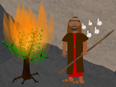 Finally Moses was ready to do what God had said. God told him that at that very moment Aaron was already travelling to meet him. Moses left the burning bush with the rod in his hand. He would use it to show the signs of God to Aaron and the Israelites so they would believe. – Slide 6