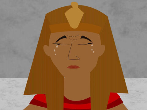 At midnight the terrible plague killed the first-born son in each Egyptian family including Pharaoh's son. Everybody was crying and felt very sad, including Pharaoh. – Slide 6