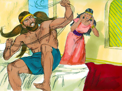 The Philistine rulers brought Delilah seven new bowstrings, and she tied Samson up with them. She also hid men in one of the inner rooms of her house. Then she cried out, 'Samson! The Philistines have come to capture you!' But Samson snapped the bowstrings as string snaps when it is burned by a fire. – Slide 5